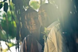 wedding, backlight, tree