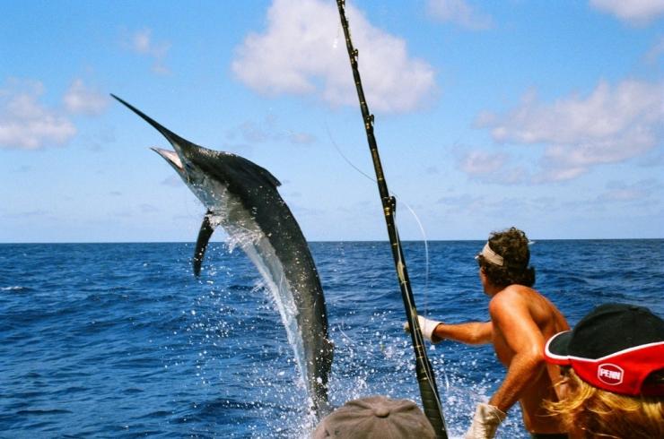 Photo by Amazing Mauritius